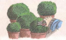 .Jardinar...