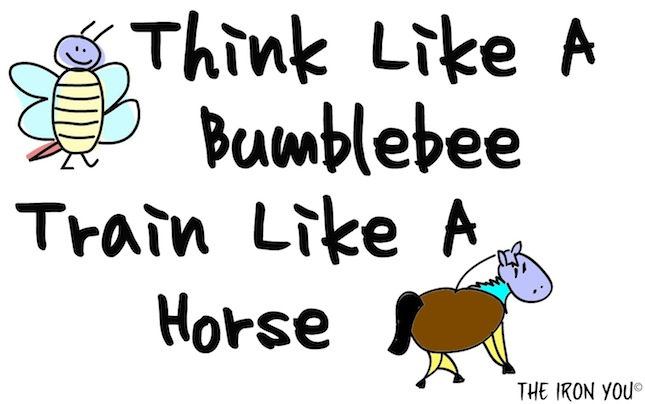 Think like a bumblebee, train like a horse