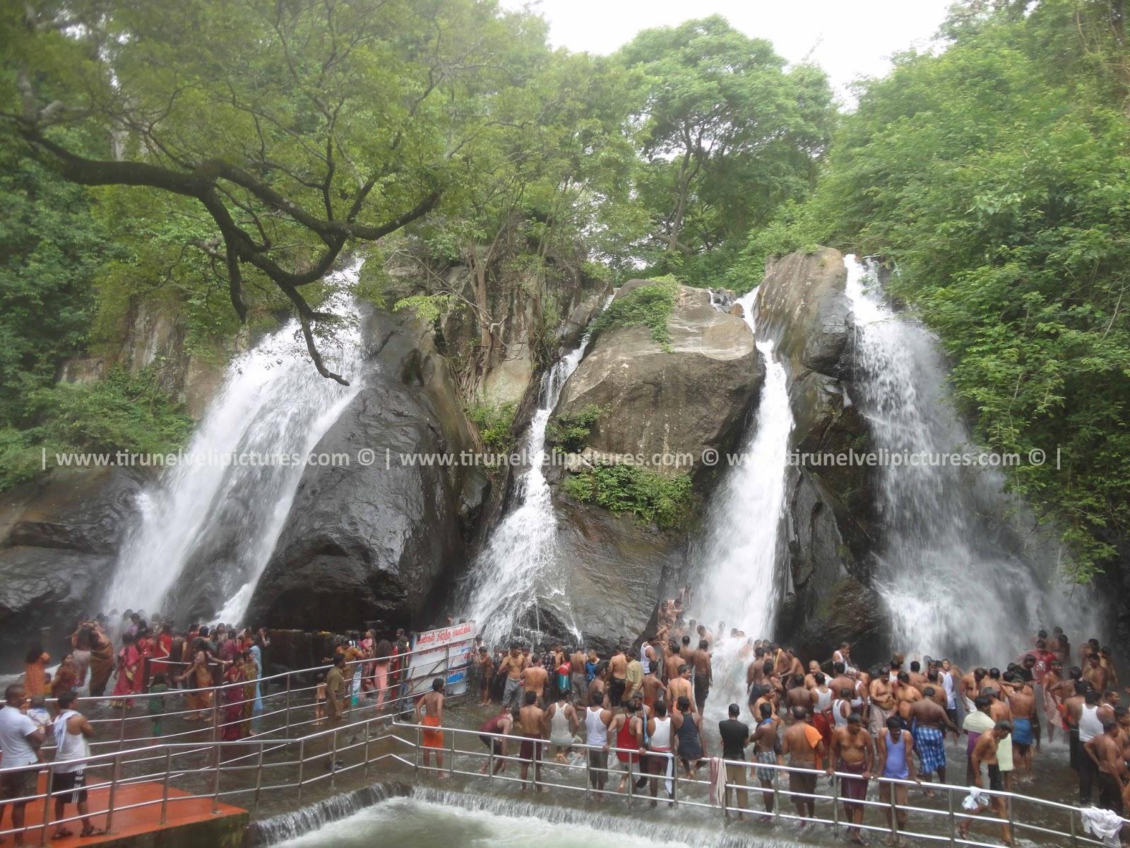 Courtallam India  City pictures : Five Falls Pictures | Courtallam Pictures | Courtallam | Courtallam ...