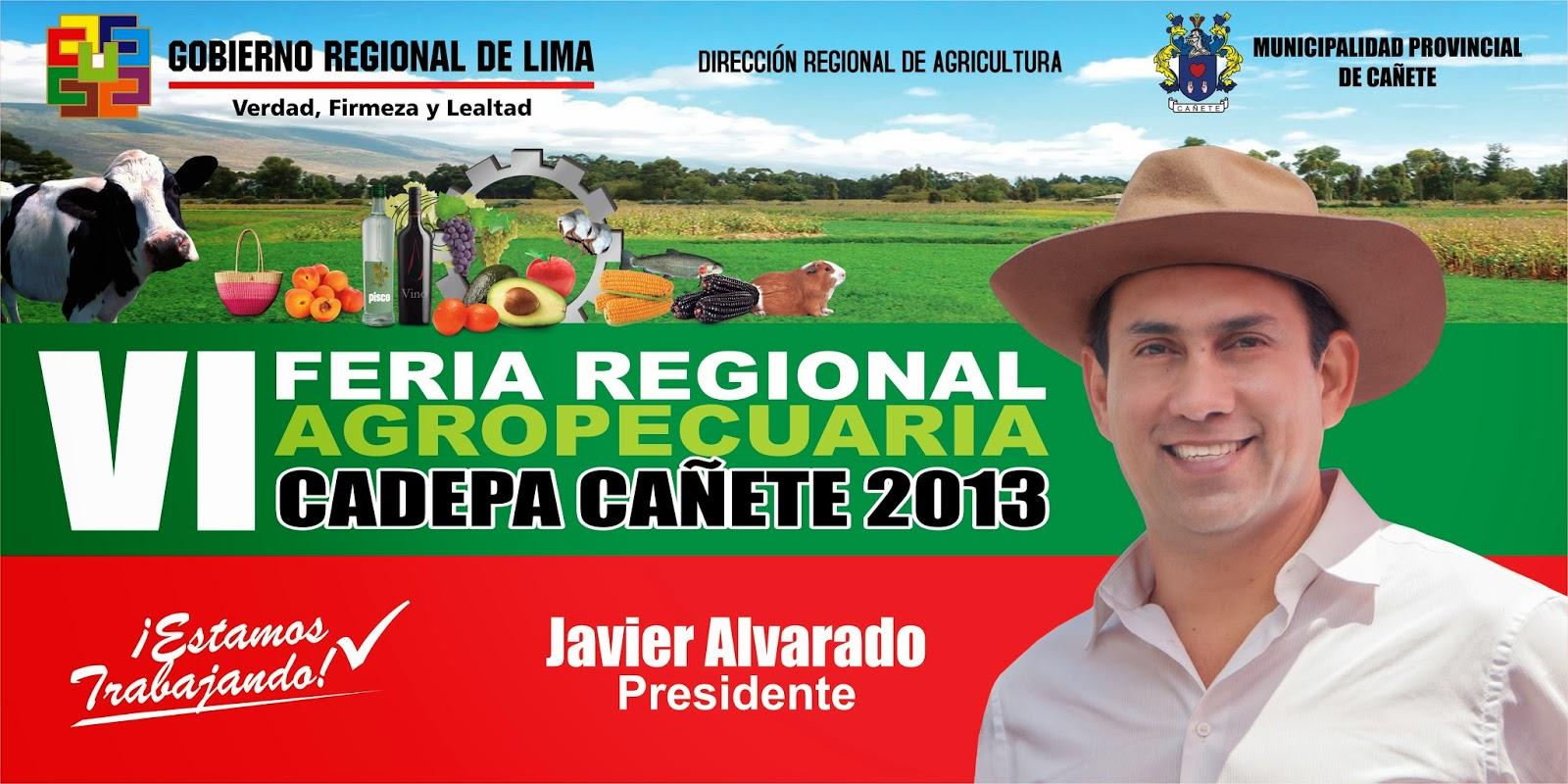 gobierno regional vi:
