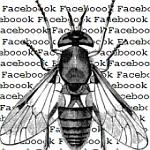 Malver se širi preko obavještenja da ste tagirani na fotografiji na Facebook-u