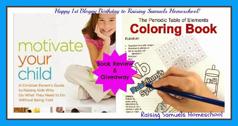 Happy 1st Bloggy Birthday - a Book Reivew and Giveaway