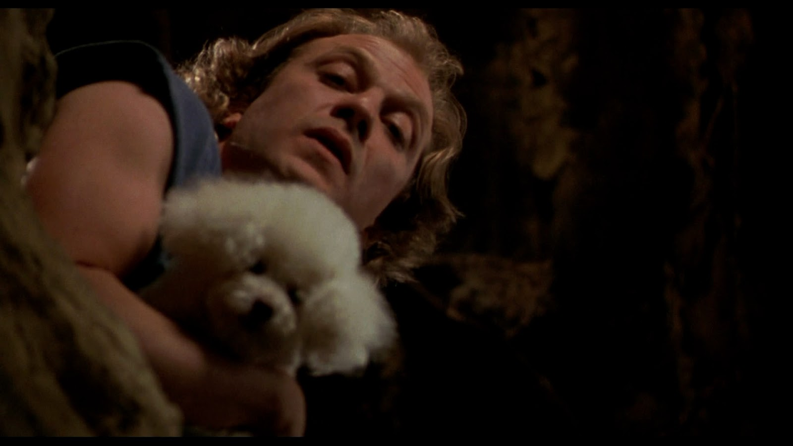 silence of the lambs - photo #4