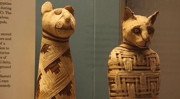 Juta Mumi di Kuburan Tanah Mesir