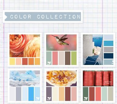 primed4design design seeds color palette search