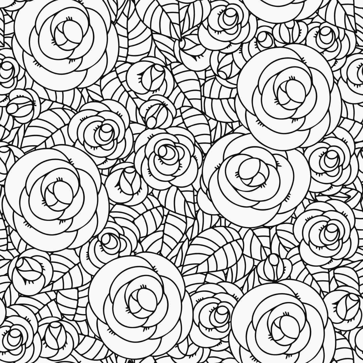 colorear multitud de rosas