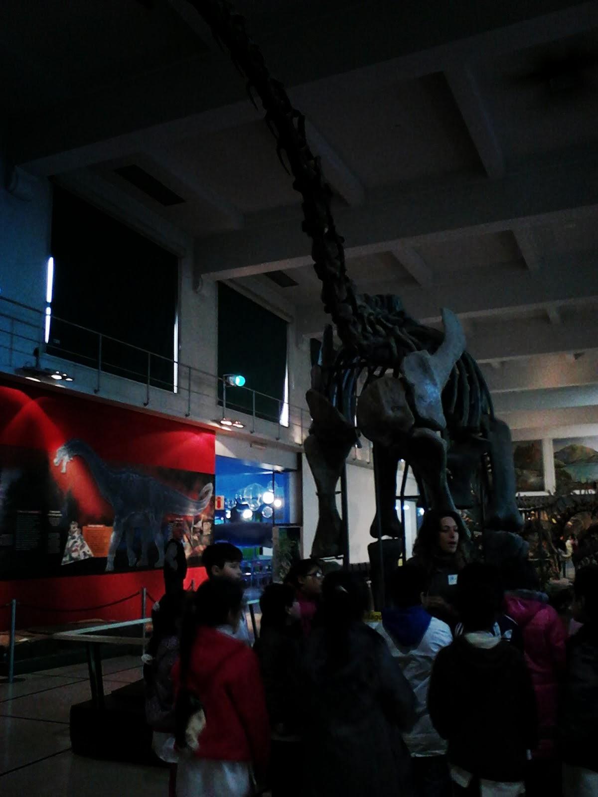 TERCERO EN EL MUSEO DE CIENCIAS
