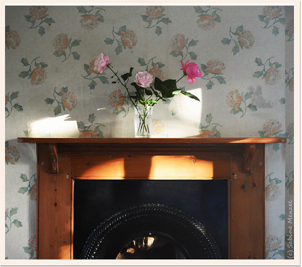 Psynopsis Interior Design Fireplace Roses