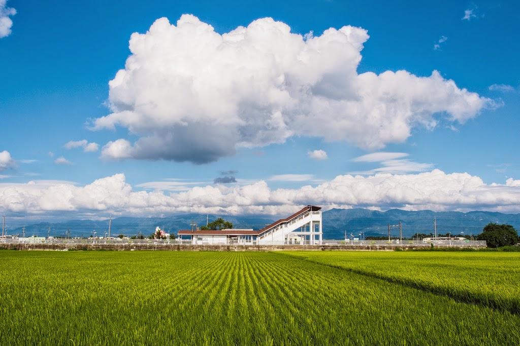 斗南石龜車站 雲朵稻田間離天堂最近的車站