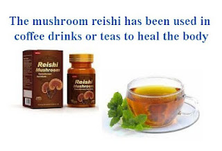 mushroom reishi has been used in coffee drinks or teas