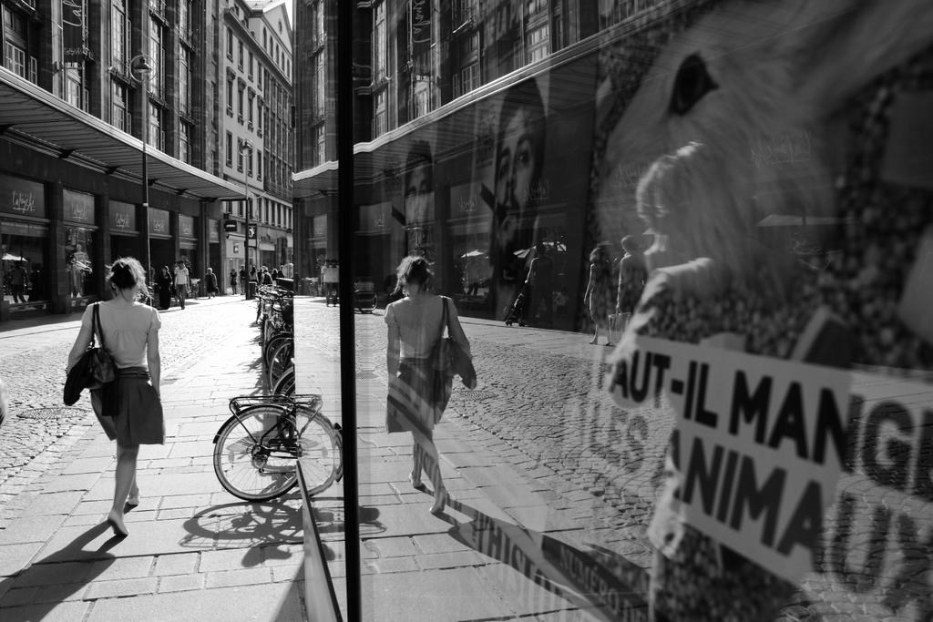 Rumo à luz (Strasbourg, France), by Guillermo Aldaya / PhotoConversa