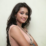 Bhanu Sri Hot Photos at Veedi Pourusham Movie Press Meet 22