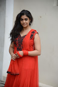 Samatha photos at SSD music launch-thumbnail-14