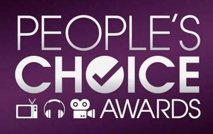 People's choice Awards 2013 Winners