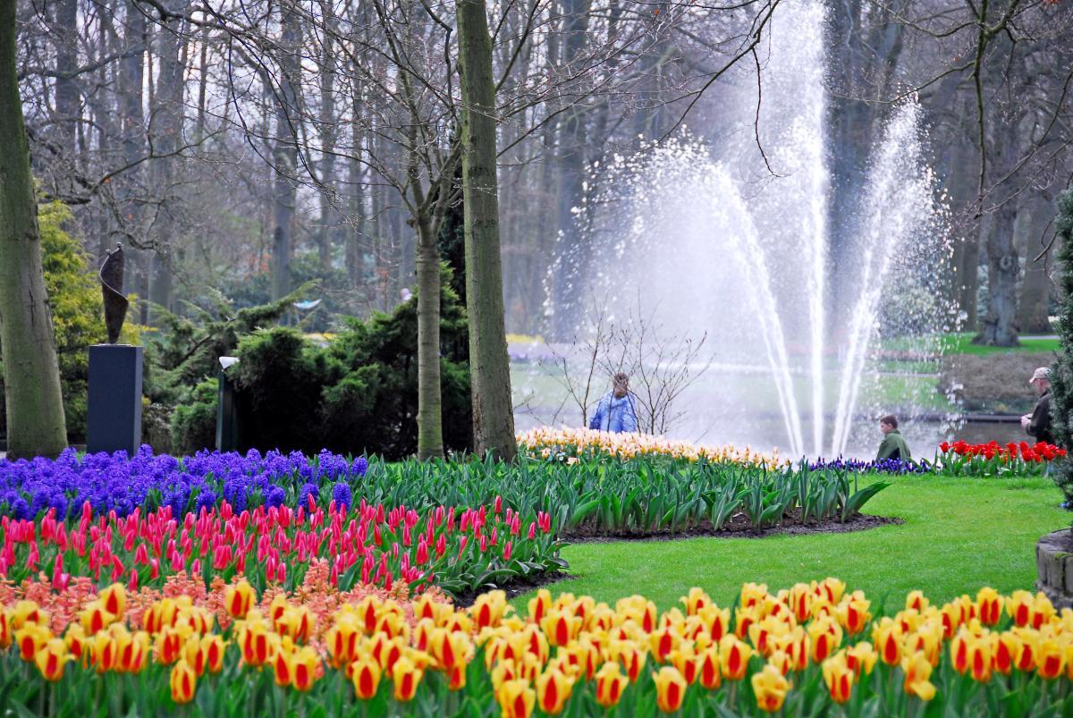 Keukenhof gardens holanda o mais belo parque for Jardines de primavera
