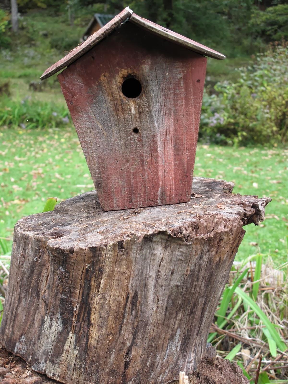 a longhouse birdhouse dec 26 2013 On longhouse birdhouse