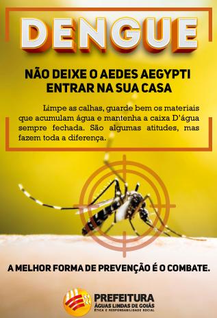 DENGUE,   NÃO DEIXE O AEDES AEGYPTI ENTRAR NA SUA CASA