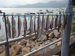 Hmmm, drying fish.
