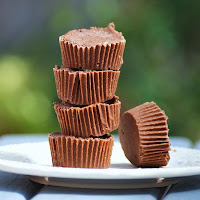 Healthy Chocolate Peanut Butter Protein Fudge Recipe