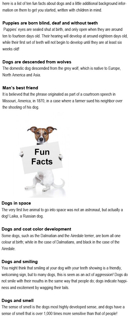 Fun facts about dogs for kids