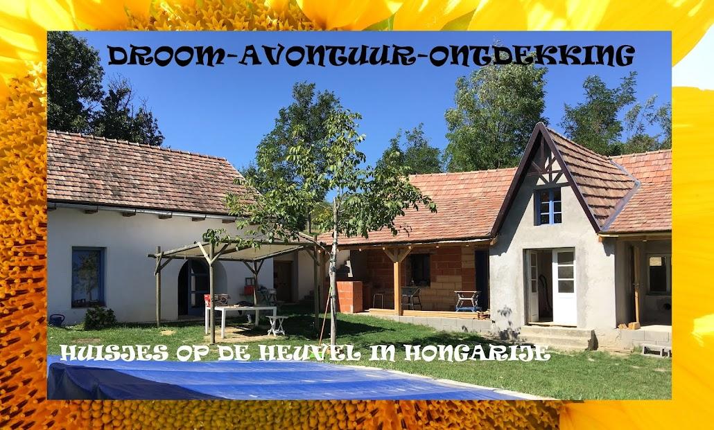 Huisje op de heuvel in Hongarije