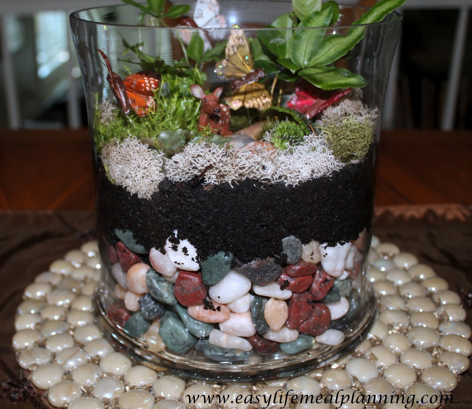 Easy Life Meal And Party Planning Exotic Diy Miniature Plant Terrarium