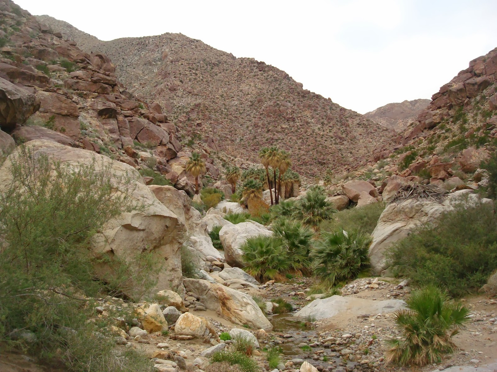 caleb 39 s geography blog anza borrego desert state park