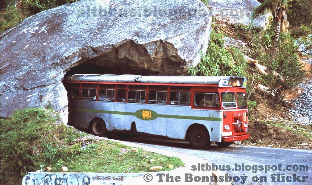 Isuzu bus 2012