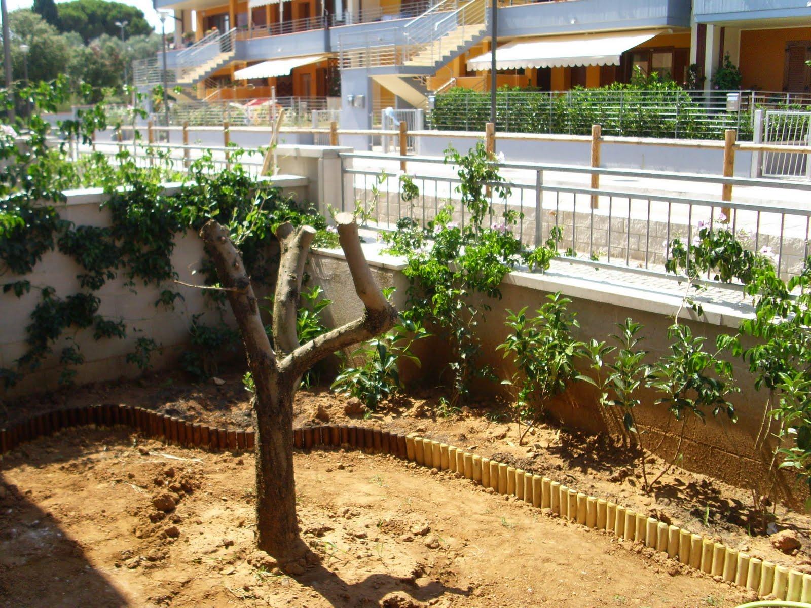 I giardini di carlo e letizia il giardino di federico 2 for Balcone giardino