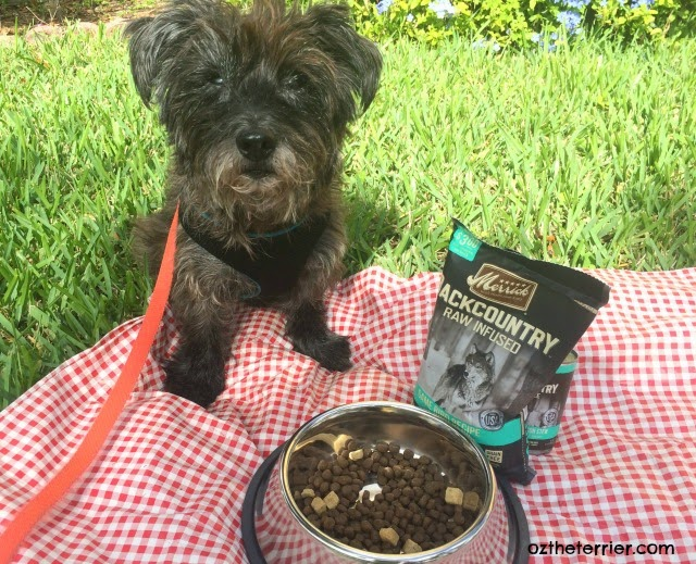 Merrick's Backcountry kibble has whole pieces of freeze-dried raw meat