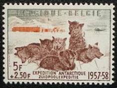 1957年ベルギー王国 国際地球観測年 南極探検隊と犬の切手