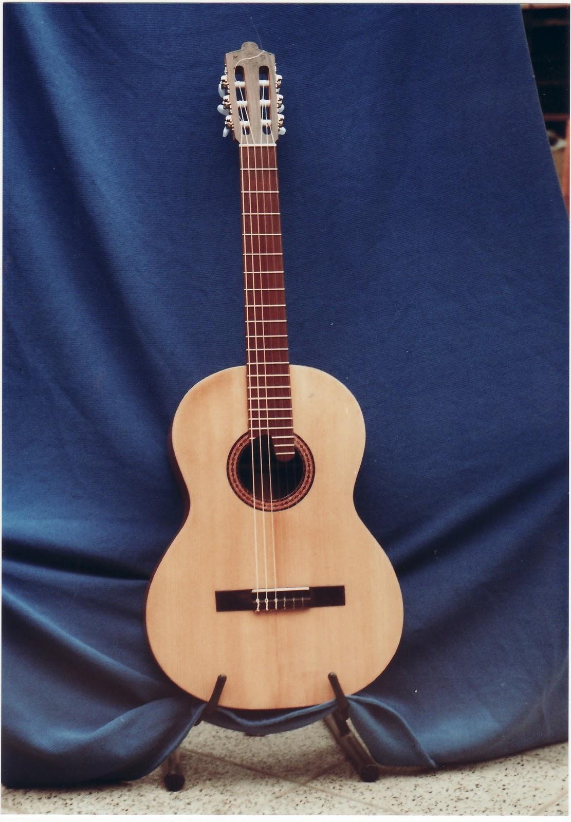 Tipos de Guitarras con Imágenes y Marcas