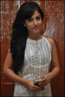 Priya Banerjee Pictures at Kiss Movie Teaser Trailer Launch Event  0041.jpg