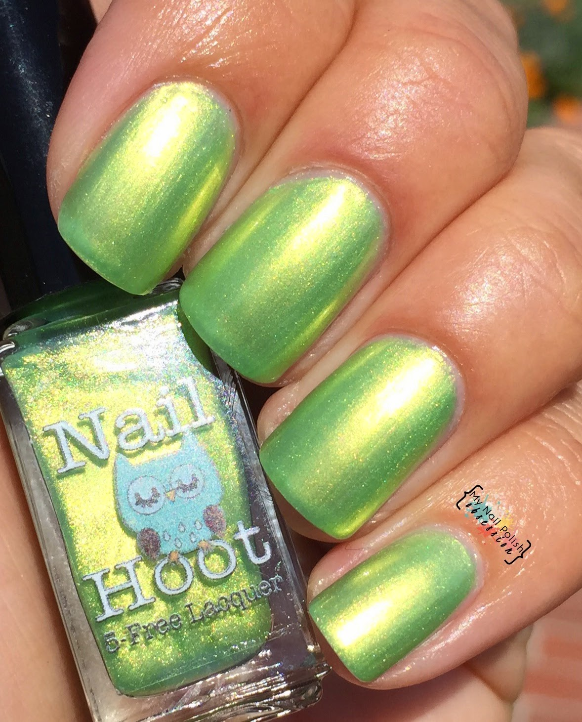 Nail Hoot Lacquers Exodus