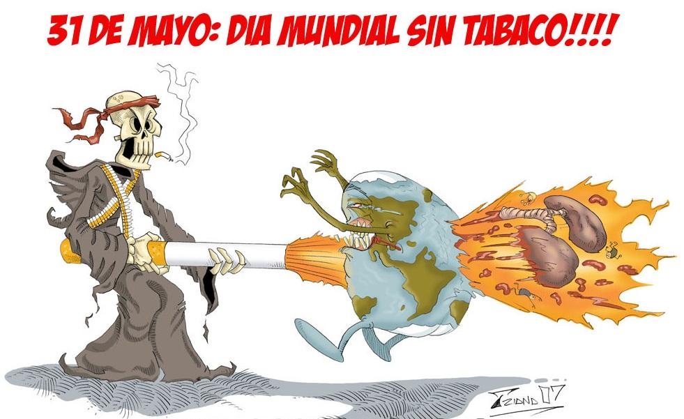 Imagen Da Domingo 31 De Mayo El 31 De Mayo Es El D 237 A Del Ni 241 O 161 Cel 233 Bralo Con