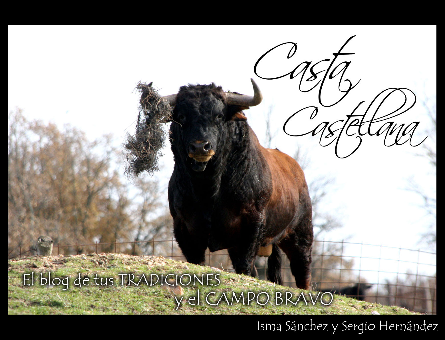 Casta Castellana