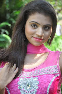 Priyanka Picture Gallery in Pink Salwar Kameez at Adi Lekka Telugu Movie Trailer Launch ~ Celebs Next