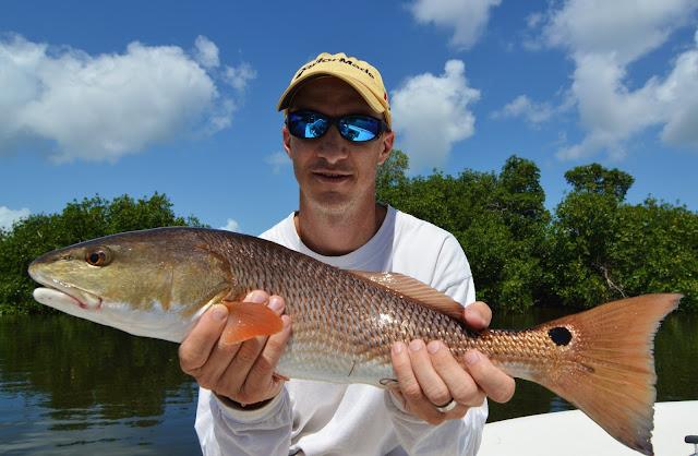 The pine island angler matlacha this week for Pine island fishing charters