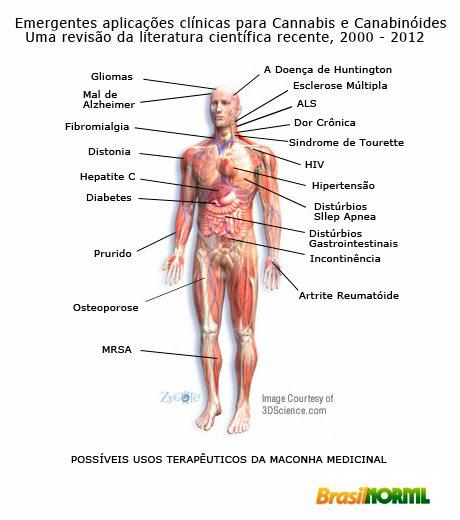 USOS TERAPEUTICOS DA MACONHA MEDICINAL