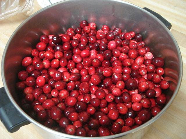 Cranberry Relish Recipes — Dishmaps