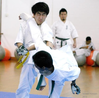 Ushiro Mawashi Geri (Reverse Roundhouse Kick)