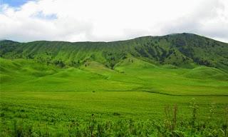 Padang Savana | Paket Wisata  Bromo