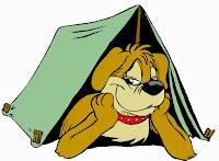Σκύλος free camping