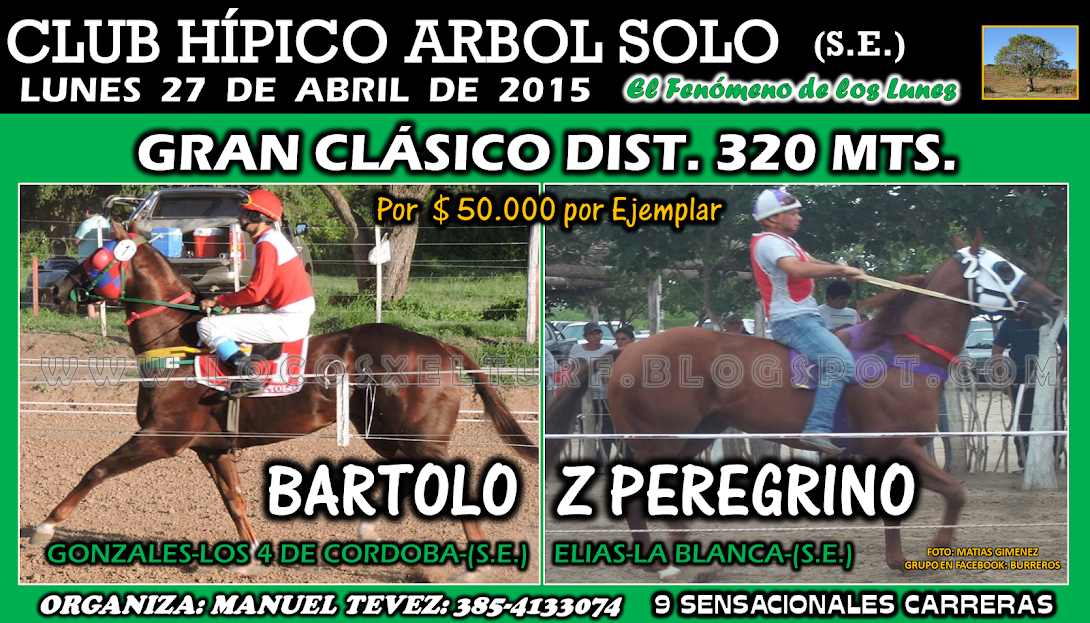 27-04-15-HIP. ARBOL SOLO-CLAS