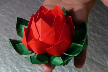 Origami lotus flower video tutorial httpfarm4aticflickr36243324755491727aa8a394g mightylinksfo