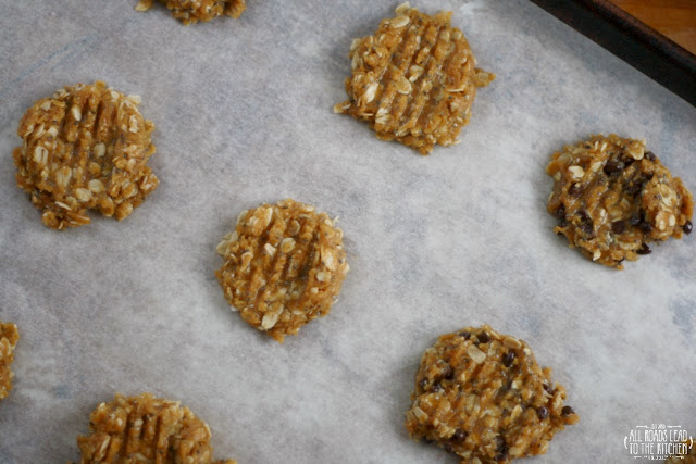 Gluten-Free Chia Seed Peanut Butter Oat Cookie Dough