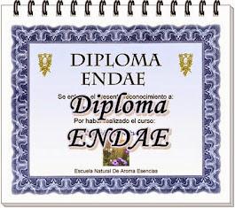 DIPLOMA ENDAE