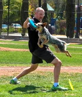 Disc Dog, Vader, Baseball Game Demonstration