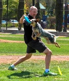 Disc Dog, Vader, Baseball Game Demonstration