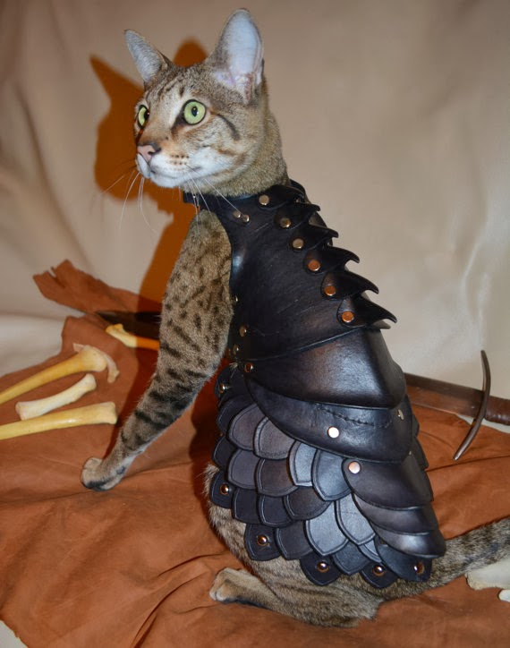 Armor khusus kucing di Jepang